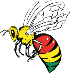 Reggae Bee Logo, illustration, design, branding, marketing
